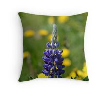 Stand-Alone Throw Pillow