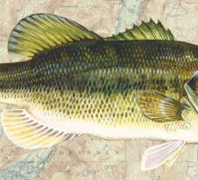 SENECA LAKE NEW YORK BASS FISHING FISH LARGEMOUTH SMALLMOUTH Sticker