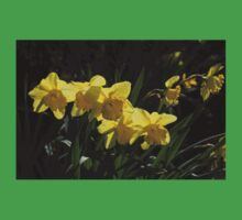 Sunny, Windy Spring Garden with Daffodils Baby Tee