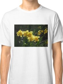 Sunny, Windy Spring Garden with Daffodils Classic T-Shirt