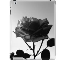 On the Verge of Being a Silhouette iPad Case/Skin