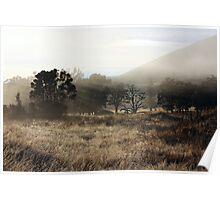 Foggy farm Poster