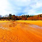 MY BEAUTIFUL BEACH by leonie7