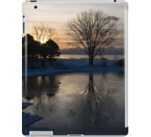 Gray Reflections and Ice Patches iPad Case/Skin