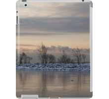 Pale, Still Morning on Lake Ontario iPad Case/Skin