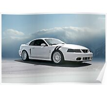 2004 Shelby Mustang Cobra Poster