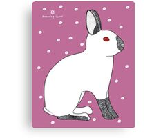 Himalayan Agouti (Chinchilla) Rabbit Canvas Print