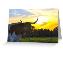 Illuminated Longhorn Sunset Greeting Card