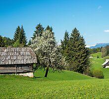 Alpine Huts Slovenia by Nick Jenkins