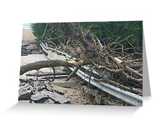 Bridge Destroyed by Flooding in Manitoba Greeting Card