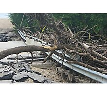 Bridge Destroyed by Flooding in Manitoba Photographic Print