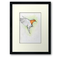 Robbin to the rescue Framed Print