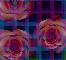 Plaid patterns and Romantic Roses Pillow by walstraasart