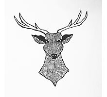 Stag graph Photographic Print
