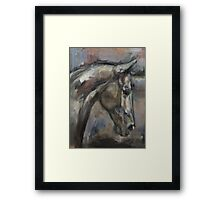The Kind and Gentle Gelding Framed Print