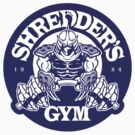 Shredder's Gym (Decal) by BiggStankDogg