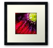 Red Section (F.23) Framed Print