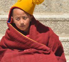 The Child Monk Sticker