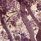 Moody Tree by Ginny Schmidt
