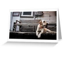 The Country Store Dog Greeting Card