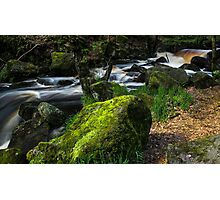 Burbage Brook in May Photographic Print