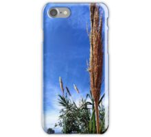 Giant reed iPhone Case/Skin