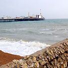 Brighton pebbles and pier by greenjewels77