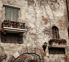 Windows of an old rustic house with flowers art photo print by ArtNudePhotos