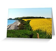 Rapeseed fields on the cliff in spring Greeting Card