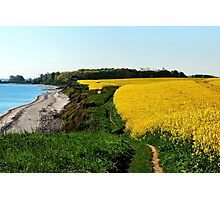Rapeseed fields on the cliff in spring Photographic Print