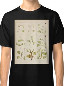 The botany of the Antarctic voyage of H M  discovery ships Erebus and Terror in the Years 1839 1843 Joseph Dalton Hooker V1 143 Classic T-Shirt