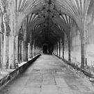 Ample Arches of Canterbury by greenjewels77