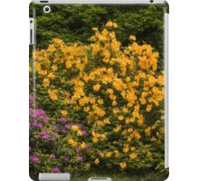 Azelea Panorama iPad Case/Skin