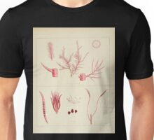 The botany of the Antarctic voyage of H M  discovery ships Erebus and Terror in the Years 1839 1843 Joseph Dalton Hooker V1 061 Unisex T-Shirt