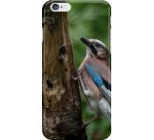 A Jay iPhone Case/Skin