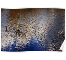 Autumn Water Reflection Poster