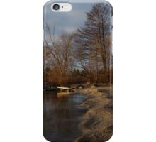 Autumn Tranquility iPhone Case/Skin