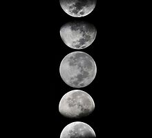 Moon Phases by Julian Machann