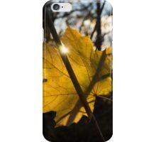 Spotlight on Autumn iPhone Case/Skin