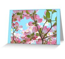 Springtime Pink Blossoms Greeting Card