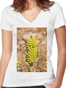 Dragon Lily seed head, Halki Women's Fitted V-Neck T-Shirt