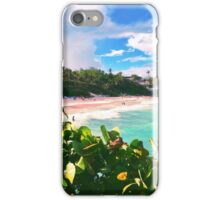 Crane Beach iPhone Case/Skin