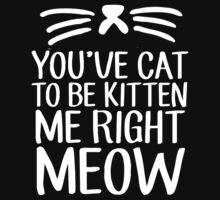 You've Cat To Be Kitten Me Right Meow by roderick882