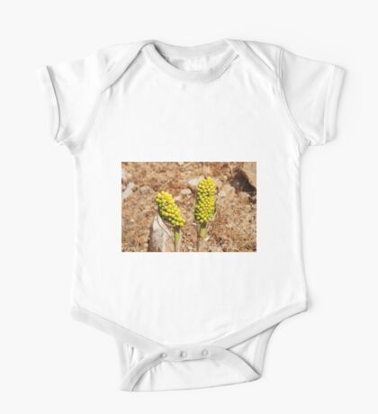 Dragon Lily seed heads, Greece One Piece - Short Sleeve