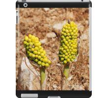 Dragon Lily seed heads, Greece iPad Case/Skin
