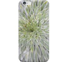 Spike Plant Close-Up iPhone Case/Skin