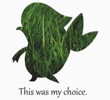 My Choice was Snivy by ArtichokesQueen