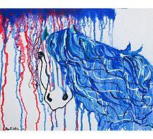 Patriot Horse Photographic Print