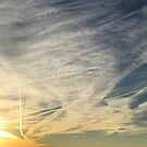 Contrails, Clouds and Geese (best viewed large) by WildestArt