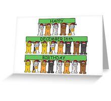 Cats celebrating birthdays on December 16th Greeting Card